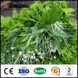 Sunwing paroi verticale verte bon marché pour la décoration de bureau