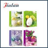 Modificar para requisitos particulares con los bolsos del regalo del papel del portador de las compras del día de fiesta de Pascua del brillo