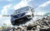 La camionnette de livraison chaude de camionnette de livraison de tonnerre de vente prennent le véhicule de 4X2 4X4