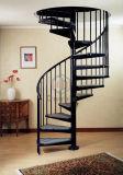 Escalera espiral del diseño de interior moderno con el pasamano de la escalera del acero inoxidable