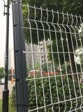 [موفكتوري] عمليّة بيع رخيصة يغلفن سياج