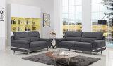 Sofá moderno da tela do projeto simples da HOME da boa qualidade