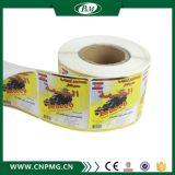 Étiquettes de papier faites sur commande de collant de vinyle de fabrication pour l'empaquetage