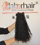 Les cheveux humains bouclés crépus de cheveu de la prolonge 105g (+/-2g) /Bundle du cheveu brésilien normal de travail non transformé 100% de Vierge tissent la pente 8A