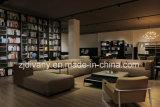 O sofá moderno do couro da sala de visitas do estilo ajustou-se (D-80-E+C+C+A)