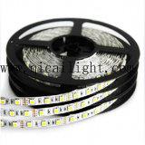 높은 광도 최신 판매 Epistar 5050 SMD LED 지구