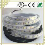 Il Ce RoHS dell'UL ha certificato la striscia di Flexibled LED