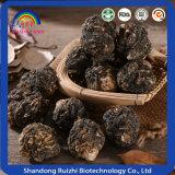 Radice di erbe cinese di Maca per cura sana