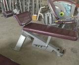 Equipamento excelente do edifício de corpo do nautilus/extensão Hip ajustável (SN29)