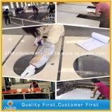 Карандаш окаймляет изготовленный на заказ мрамор Carrara белый/каменную верхнюю часть тщеты ванной комнаты