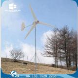 generatore di vento a magnete permanente di miglioramento domestico delle tre lamierine di 600W 12V/24V
