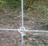 電流を通された蝶番を付けられた接合箇所の牛塀