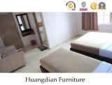 Mobília moderna para o quarto do apartamento e a sala de visitas (HD838)