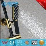 China-Hersteller-moderner Entwurfs-Regen-Dusche (BF-60036K)