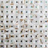 Color de agua dulce de Brown de la naturaleza del shell y azulejo de mosaico del shell del olmo