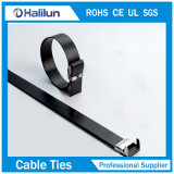 Tipo rivestito fascette ferma-cavo della serratura dell'ala del PVC dell'acciaio inossidabile