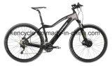 """29 """"高品質の隠された電池Eのマウンテンバイク(SY-E2902)が付いている電気バイクの自転車"""