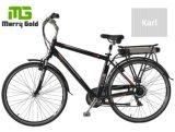 Bici eléctrica de la ciudad del marco 250W del eje del motor del precio barato caliente fuerte de la venta