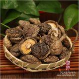乾燥された黒い菌類