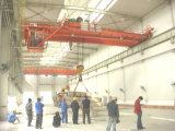 Modello di Qd un amo da 50 tonnellate che di sollevamento le doppie gru del fascio