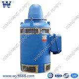 Асинхронный двигатель Пол-Вала вертикального мотора насоса турбины вертикальный (IP23)