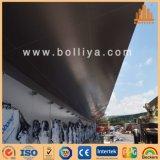 Panneau composé en aluminium d'ACP d'Acm pour le plafond