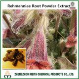 Extrait de poudre de fond de Rehmanniae d'ingrédient de médecine chinoise de Tranditional avec des polysaccharides de 30%