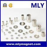 Редкоземельные NdFeB постоянный неодимовый магнит (MLY двигателя080)