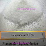 Matérias- primas do hidrocloro do Benzocaine para o HCl farmacêutico do Benzocaine