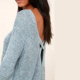 히스속의 식물 파란 등이 없는 스웨터