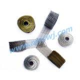 15 de Vlotte Spijkers 2.5*65 HDG van de Rol van de graad/het Roestvrij staal Galv van de Ring/van de Schroef