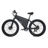 La neige vélo avec deux moteurs 500W Kenda Pneus vélo électrique