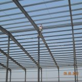 Gruppo di lavoro chiaro prefabbricato della fabbrica della struttura d'acciaio dal fornitore professionista