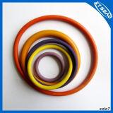 소형에 있는 다채로운 O 반지