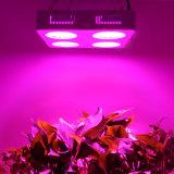 Marte LED hidráulico crece ligero para la luz del jardín del LED