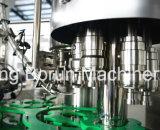 Compléter l'installation de mise en bouteille assaisonnée de l'eau de pétillement pour les bouteilles en plastique