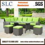 Mobília do jardim, mobília do jardim do Rattan, jardim ajustado (SC-A7621)