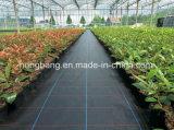 Invernadero plástico de la estera del control de Weed del jardín que cubre con pajote la película