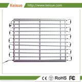 Plant het Groeien de Inrichting van de Verlichting met 12 Lampen van PCs