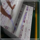 Folha oca do policarbonato da cavidade da folha do PC