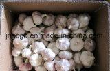 Ineinander greifen-Beutel, der 5.5cm den frischen normalen weißen Knoblauch packt