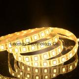 SMD5050 strisce di luminosità LED con Ce RoHS