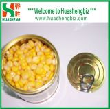 In Büchsen konservierter süsser Mais (HSCSC-001A)