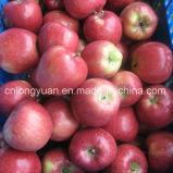 De nieuwe Rode Appel Jiguan van het Gewas met de Verpakking van het Karton