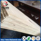 Poplar Pine LVL contraplacado para andaimes Plank e estrutura da cama