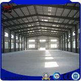 Структура большой пяди установки низкой стоимости легкая стальная с строительными материалами