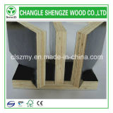 Qualité 1200*1800mm Birch Core Shuttering Plywood