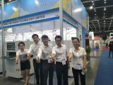 중국 제조자 SMT 검사 온라인 땜납 풀 검사 기계