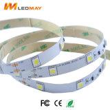 3 Streifen-Licht-einzelne Farbe der Jahr-Garantie-SMD5050 LED mit CER RoHS verzeichnet