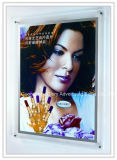 Publicidad Slim LED sin cerco y Crystal Light Box